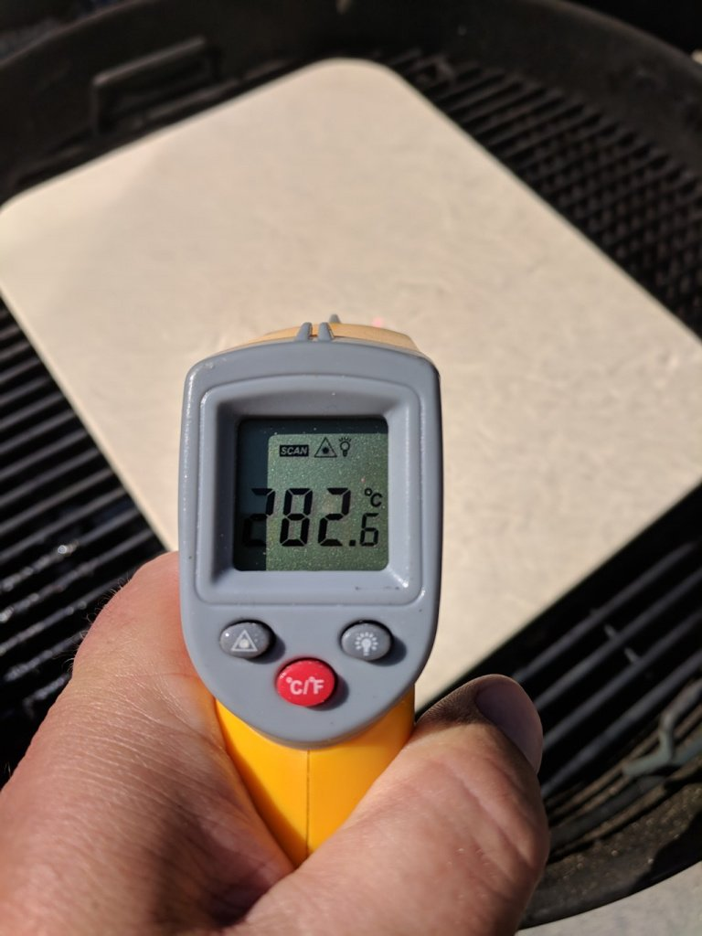 Thermometer Reading